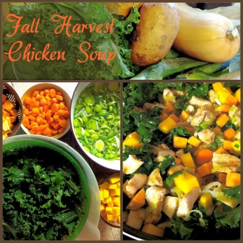 Fall Harvest Chicken Soup
