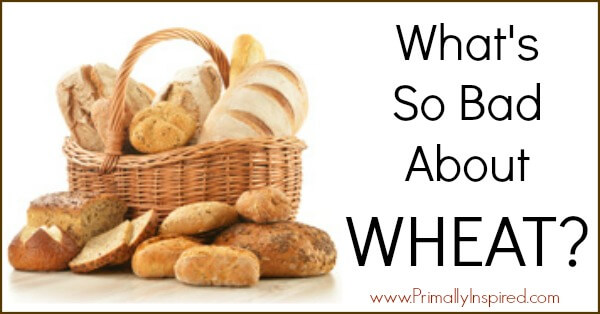 What's Wrong with Wheat | PrimallyInspired.com