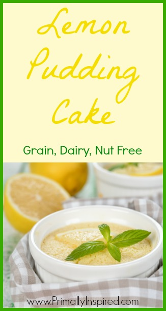Lemon Pudding Cake (Grain, Dairy, Nut Free) - PrimallyInspired.com