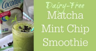 Dairy-Free Matcha Mint Chip Frappé Recipe - No Refined Sugar Smoothie | Primally Inspired