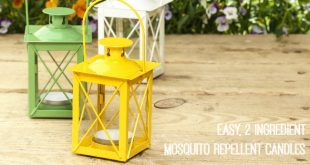 How to make easy mosquito repellent candles that repel mosquitoes, gnats and all other bugs - this is so simple and doable and all natural!