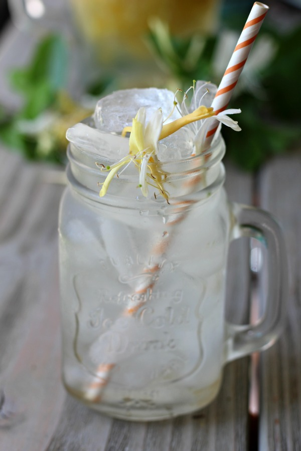 How to Make Honeysuckle Tea and benefits of honeysuckle