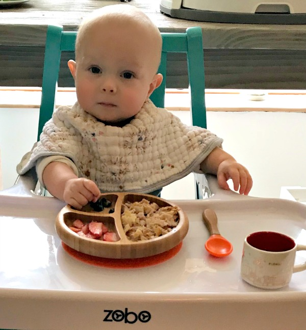 Baby Led Weaning How to and Baby's first foods
