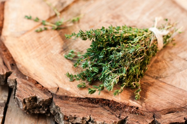 Best Herbs for babies and kids. How and When to use them. Great information!