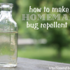 Favorite Things: How to Make Homemade Bug Repellent Oil